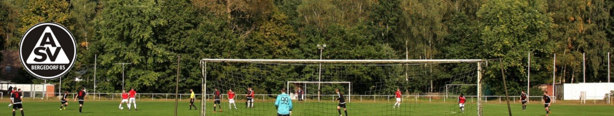 ASV Bergedorf 85 – Fußballabteilung